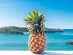 Pineapple House Whitsundays - waterfront Island views - watch sunri& set. Holiday Bliss.