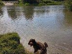 River Coln Fairford