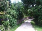 Bed and Breakfast naturAS - La Casetta nel Bosco. La stradina di accesso