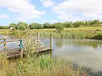 Fishing Lake at Vose Farm Holiday Cottages, Cornwall