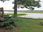 View from the side yard to the lake.  There are fish in that wild rice you see.