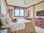Master bedroom with King bed, walk-in closet, cable TV