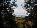 Mount Mitchel