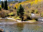Fly fishing is a year-round sport in the Aspen/Snowmass area.  Photo courtesy Aspen Chamber Resort Association, Juan...