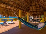 Or enjoy the shade of the thatch roof hut and take a nice nap in the hammock