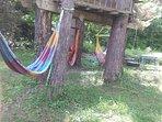 Hamacs pour moment de détente en lisière de forêt