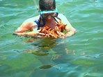 At starfish beach