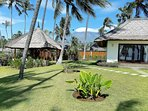 Your Large Private Tropical Garden by the Ocean