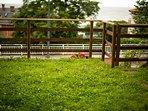Formidable jardín privado para relajarte viendo el mar