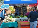 Guests 'Love' Taos Farmers Market! 5.12 th-10.27th, 8AM until 12:30 on Taos Plaza! It's a party!