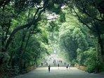 Yoyogi park and Meiji Shrine is very close!