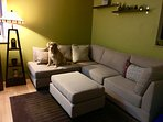 new couch in living room