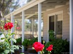 Hunter Moon's amazing Rose Gardens