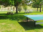 Table tennis in the gardens