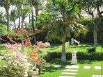 Villa Insulinde garden