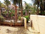 Puerta de acceso a zonas comunes, maderas cerramiento piscina al fondo