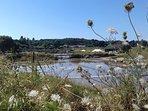 Les marais d'Olonne à 3km