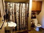 New full bathroom, 2017, on the lower level by the 4th bedroom/playroom.