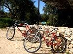 En la finca encontramos 2 bicicletas cuyo uso es gratuito