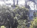 Casas estilo Piedra 2 ambientes - Base 2 personas (hta 4 huespedes): Vista desde el arroyo