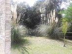 Casas estilo Piedra 2 ambientes - Base 2 personas (hta 4 huespedes): Vista a parque, bosque y arroyo