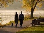 Walking at Burrator Reservoir