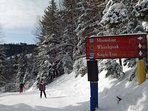 Lots of novice trails to for easy starts to your skiing day.