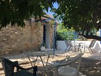 View of house from under the citrus trees