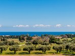 Bello Blu Luxury Villa is located in a field of olive trees with stunning sea views