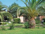 1 bedroom Apartment in Figareto, Corsica, France : ref 5440125
