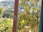 Vue sur le jardin,  le magnolia, le vallon d'en face..