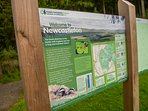 Newcastleton Forest Park on doorstep, 7stanes mountain bike trails, wildlife, badgers, pond dipping