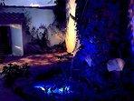 Estanque en jardín, iluminación led azul, con peces, tortugas, cangrejos...