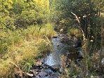 Near by Box Elder Creek