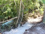 Private trail to beach road