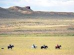 Paseos a caballo. Horse riding