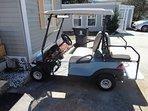 Playful Pelican golf cart