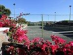 tenniscourt, soccer, basket (free)