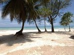 Spiaggia Maisha Marefu
