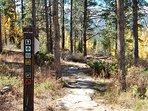 Hiking trails in neighborhood