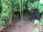 The Secret Garden.  A private, woodland garden with views through the 'window' across the valley