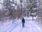 Cross Country skiing in Denmark Maine and Bridgton Maine
