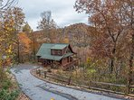 Fall color from Blue Bear Cabin