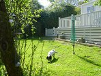 Dog and Child Friendly Garden with Picnic Bench