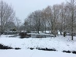 Pond area in the snow