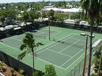 Tennis Anyone - On Site Tennis Courts