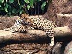 Common areas - Wildlife Refuge