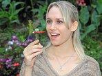 Common areas - Hummingbirds Garden