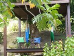 hammock zone in the garden