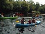 A few canoes!